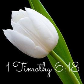 1 Timothy 6-18