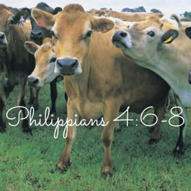 Philippians 4-6-8