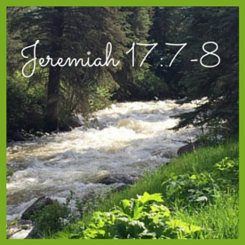 Jeremiah 17-7-8 (1)