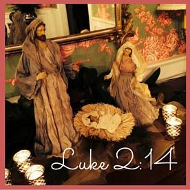 Luke 2-14
