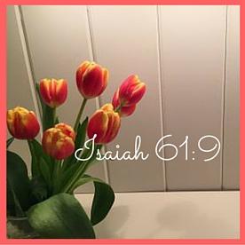 Isaiah 61-9