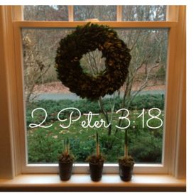 2 Peter 3-18