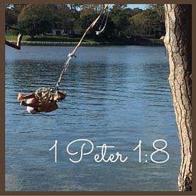 1 Peter 1-8 (1)